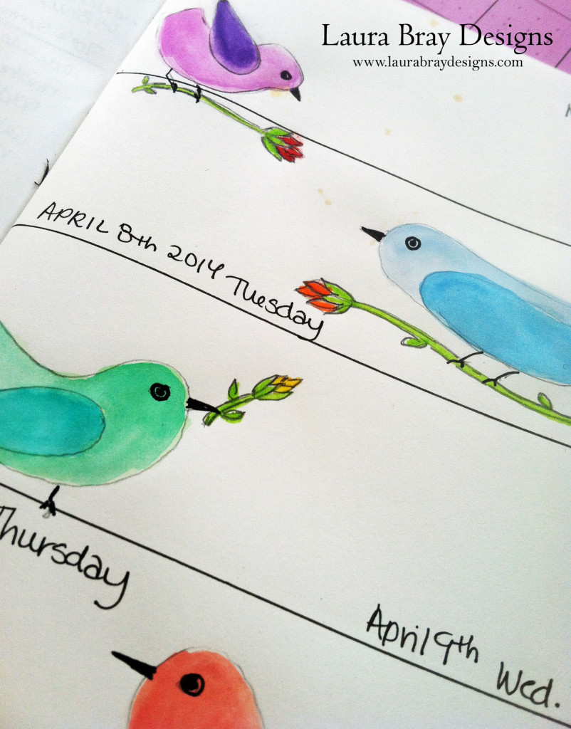 Bird Illustrations by Laura Bray