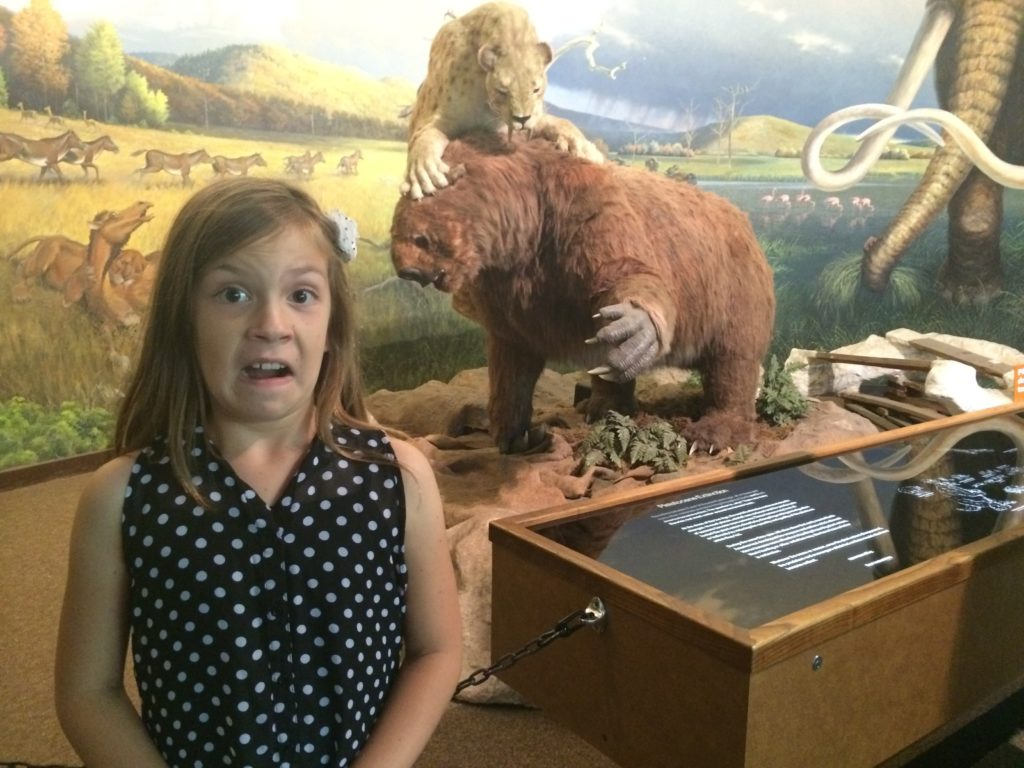 Tips for Your Visit to the La Brea Tar Pits and Page Museum: LauraBrayDesigns.com
