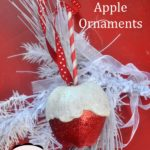 Candy Apple Ornament copy